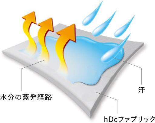 水分の蒸発経路 汗 hDcファブリック